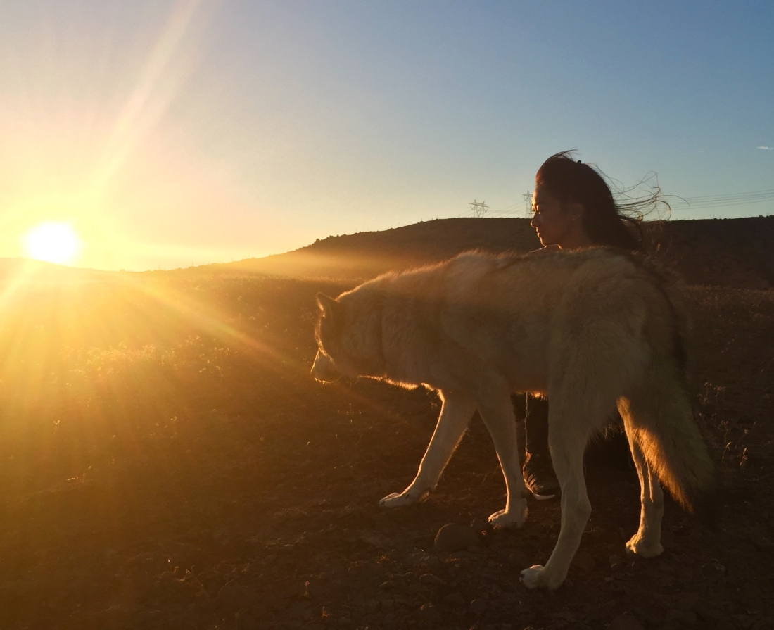 What Wolves Taught Me About Worthiness